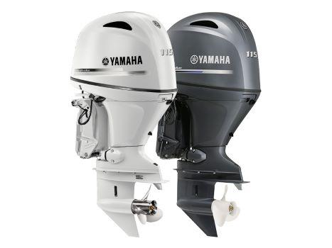 Twin Yamaha 115hp